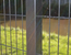 3M security fencing